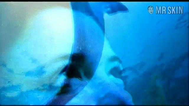 Dolphins brendler1 frame 3