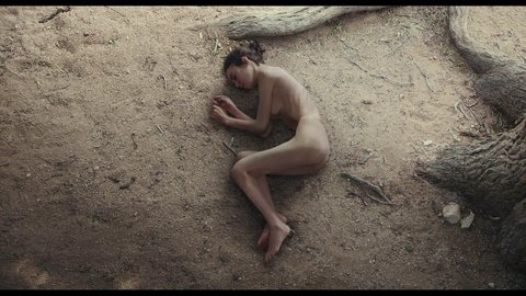 Tothebone collins hd 03 large 3