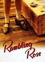Rambling rose 1fbcdd1d boxcover