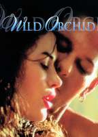 Wild orchid 22343367 boxcover