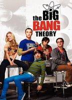 The big bang theory 73a556cc boxcover